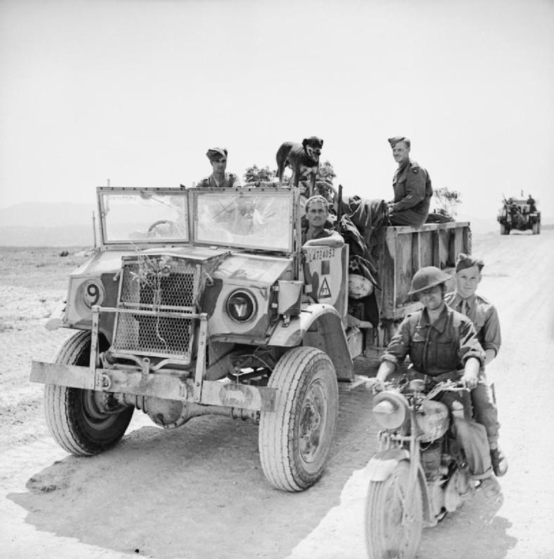 Royal Chevrolet Used Cars: Motor Transport Organisation And Numbers In 8 Army