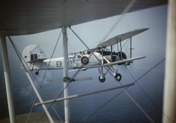 A Fairey Swordfish in Flight TR1138